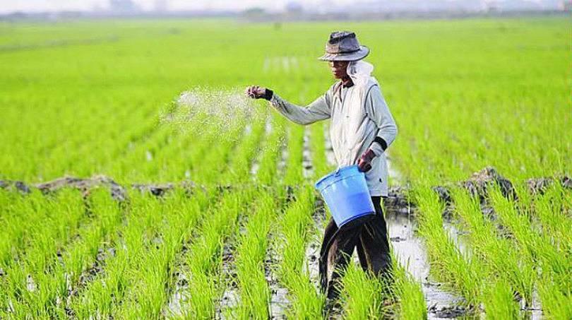 Petani Tulungagung Kurang Minati Asuransi Pertanian