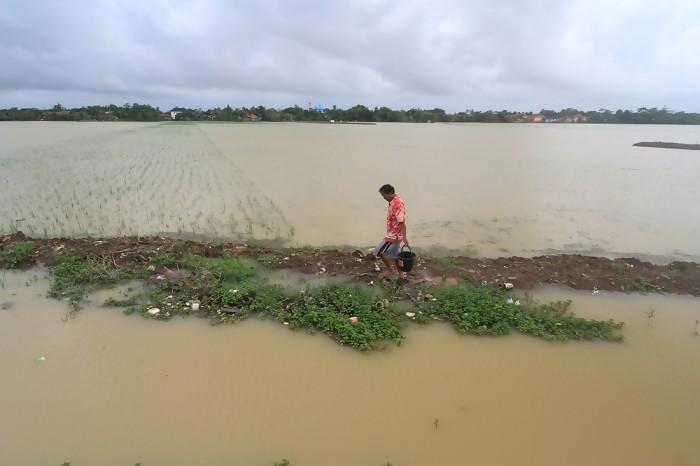 Sering Jadi Bulan-bulanan Banjir, Bupati Ajak Petani Ikut Asuransi