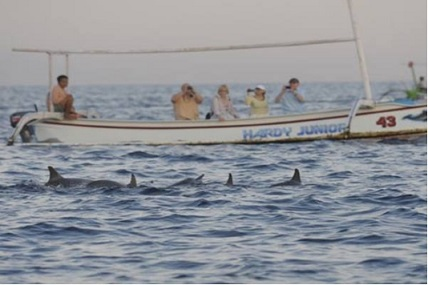 Terganjal Administrasi, Peluncuran Asuransi Nelayan Mundur Lagi