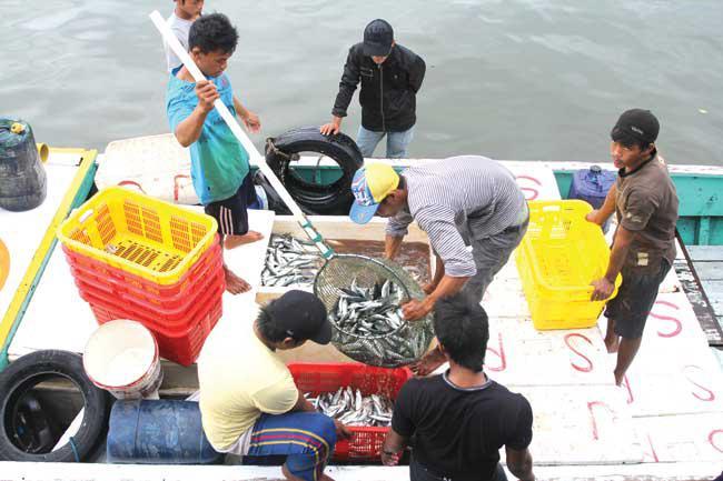 Nelayan Balikpapan Mau Dapat Asuransi..? Ini Syaratnya