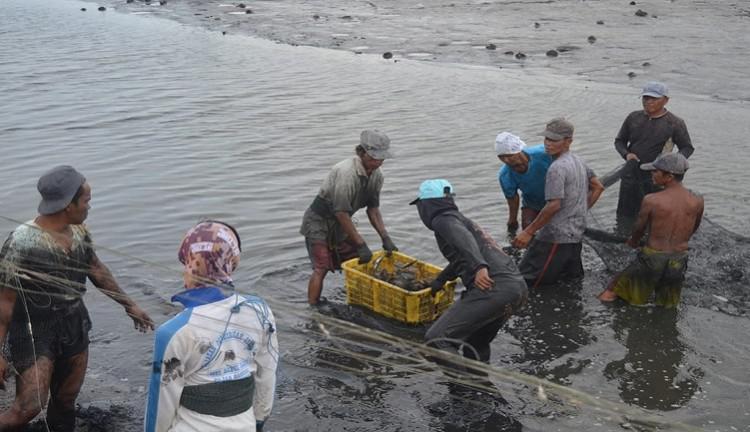 Pemkab Langkat Usul, Kriteria Penerima Asuransi Pembudidayaan Ikan Direvisi