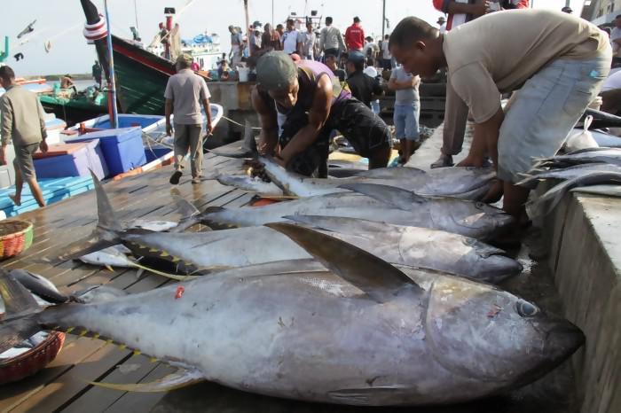 Ribuan Nelayan Lebak Terima Asuransi Dari KKP