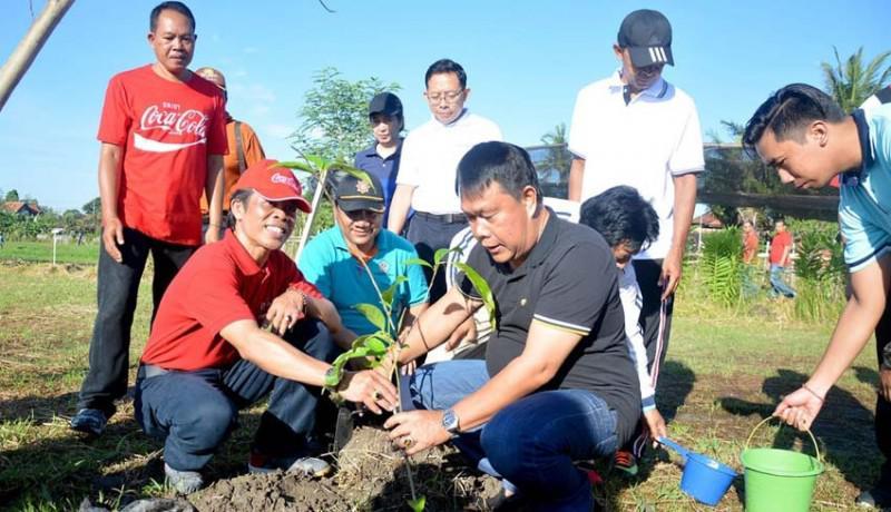 Sebanyak 50.350 pohon di Kota Denpasar yang ada di tanah negara diasuransikan oleh Pemkot Denpasar.